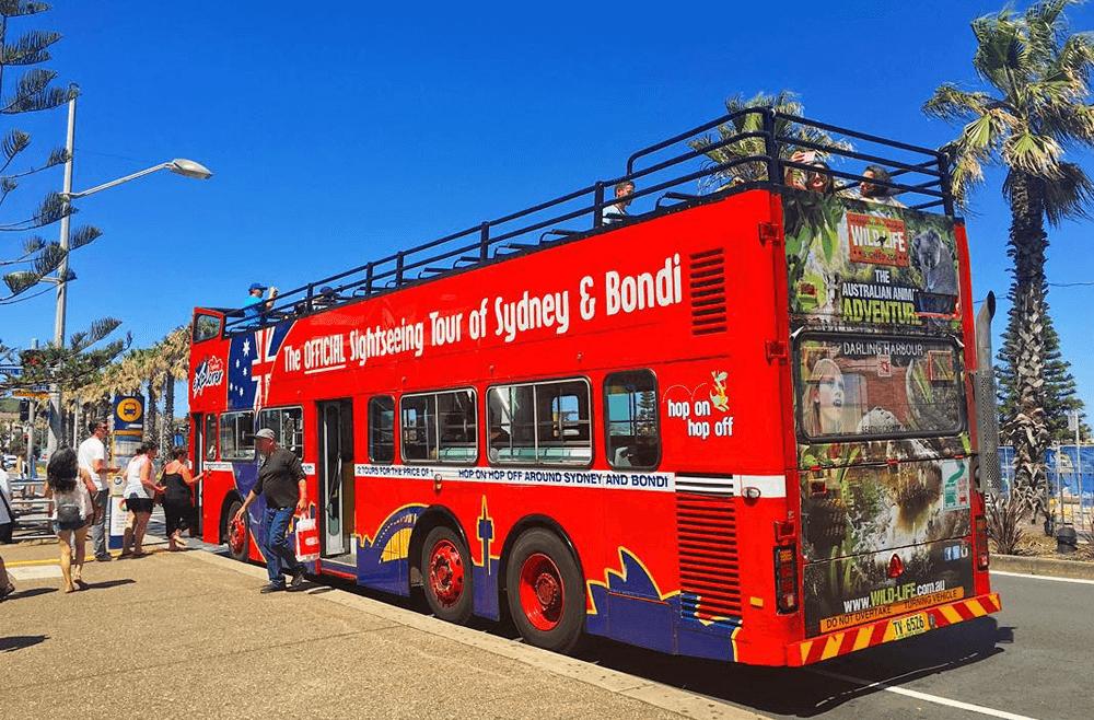 赤い2階建てバスに乗ってシドニーを一周 [ボンダイエクスプローラー]