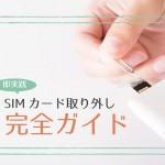 20160129_sim