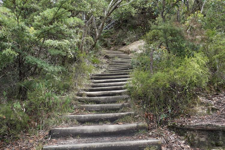 ブルーマウンテン英語ツアーハイキング